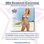 Dallas Cowboys Cheerleaders 2014 Swimsuit Desktop Boxed Calendar