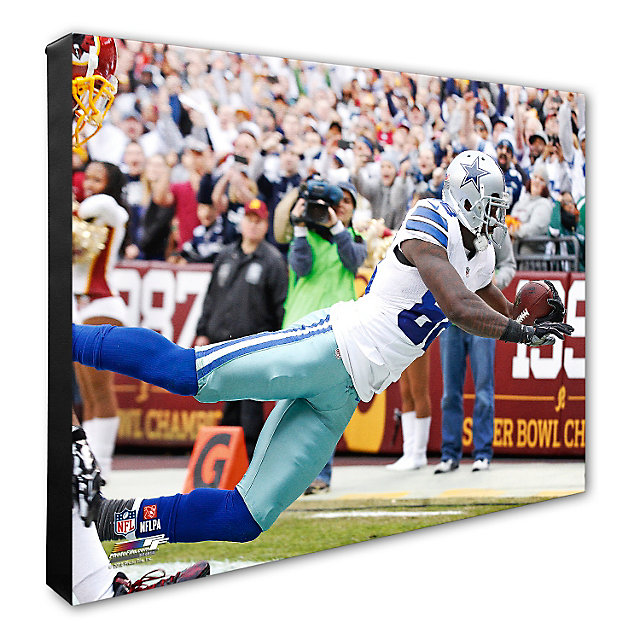 Dallas Cowboys 16x20 Dez Bryant Record Touchdown Catch Canvas